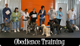 Canine Obedience Classes